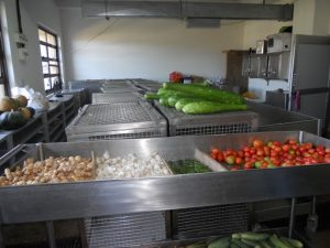 Various Types of Diets Given Free of Cost to Patients in Government Hospitals in Tamil Nadu